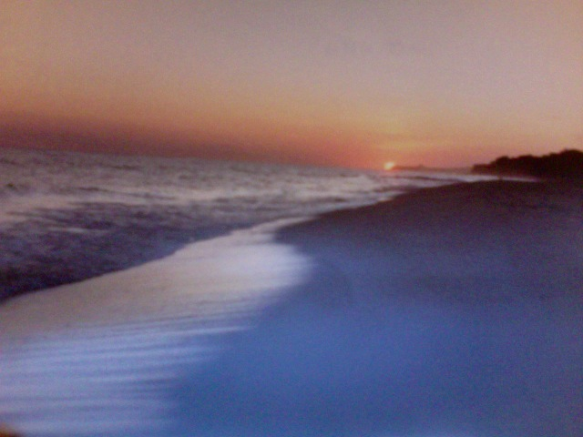 I took this photo in Montauk many years ago. Lisa DeLuca